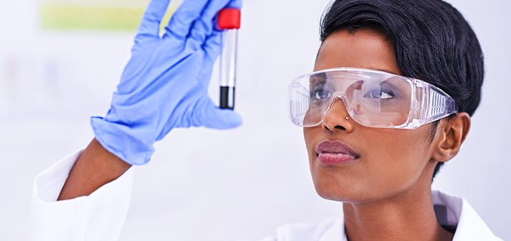 scientist examines a test tube